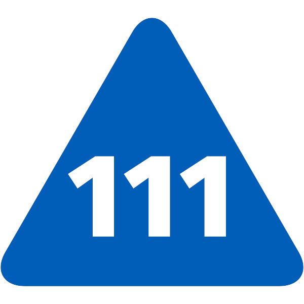 Bridgit Services - 111 NHS